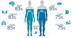 اثرات آب بر سلامت انسان